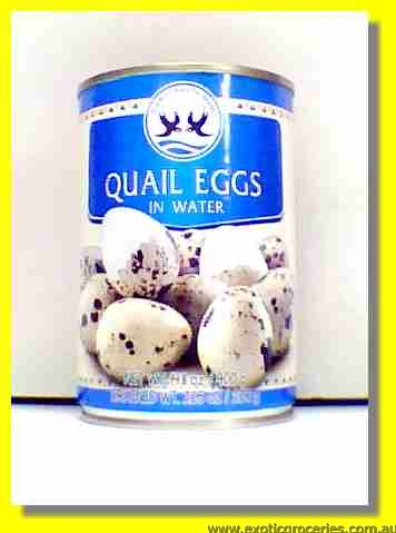 Quail Eggs in Water