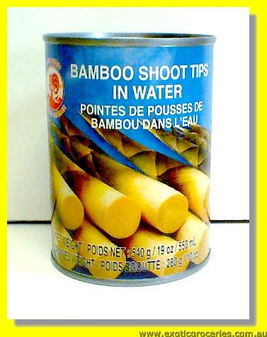 Bamboo Shoot Tips