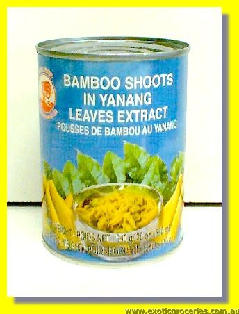 Bamboo Shoot in Yanang Leaves Extract