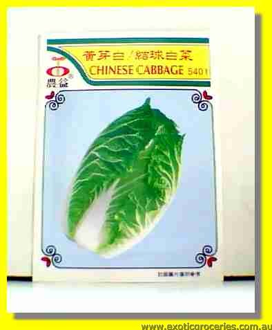 Chinese Cabbage Seed 5401