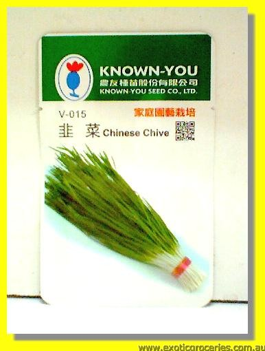Chinese Chive Seed V-015