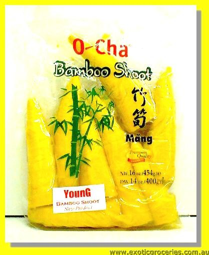 Young Bamboo Shoot Tip