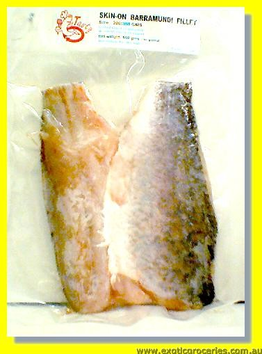 Frozen Barramundi Fillet (Skin-On)