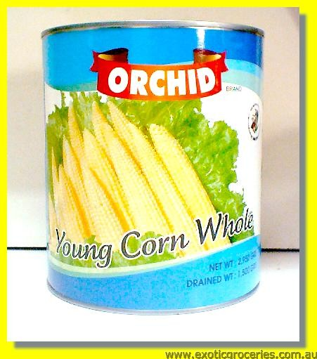 Young Corn Whole (Baby Corn)