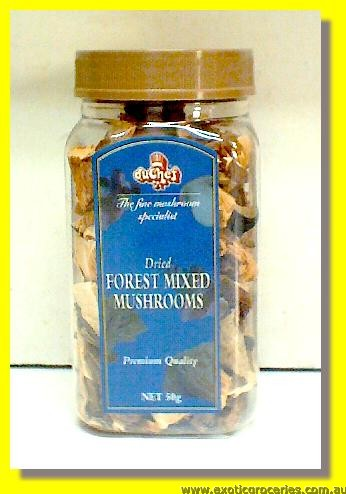 Dried Forest Mixed Mushrooms