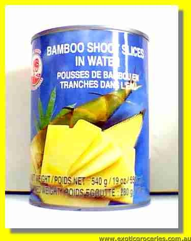 Bamboo Shoots Slices in Water