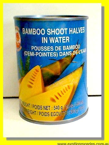 Bamboo Shoots Half in Water