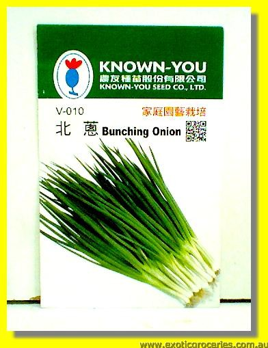 Bunching Onion V-010